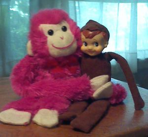 Roy and Pink Monkey